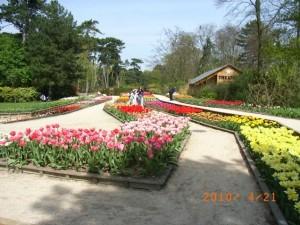 ヴァンセンヌの森「花公園」